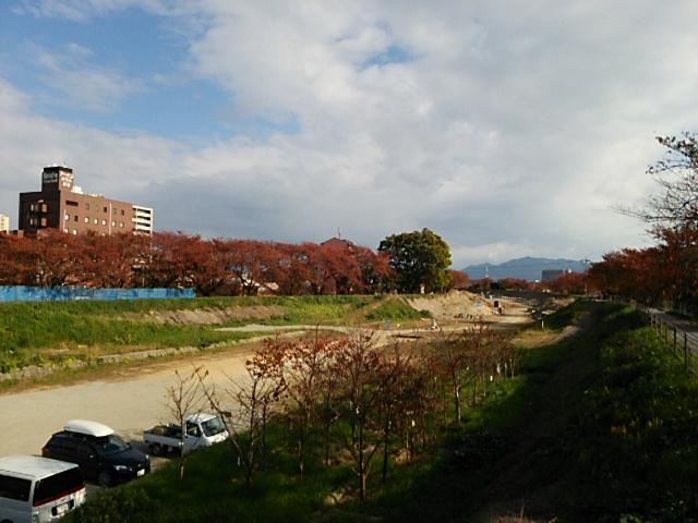 草津川の紅葉