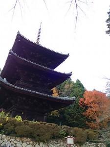 三井寺・三重塔