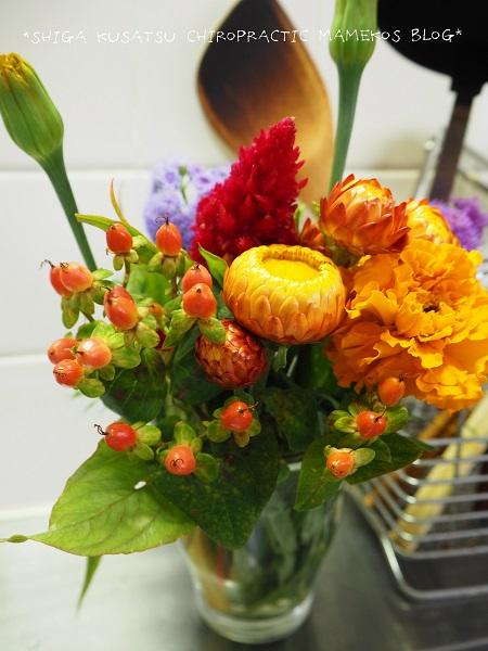 カイガラソウ花束