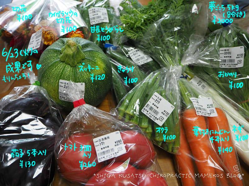 6月23日野菜