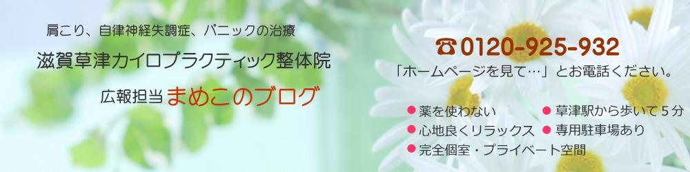 【草津市の整体】滋賀草津カイロプラクティック 広報係・まめこのブログ